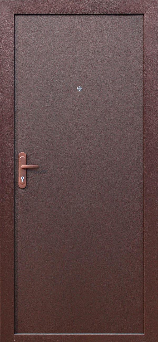 входная железная дверь россия